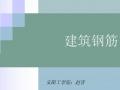 安阳大学-建筑钢筋教学课件 (53播放)