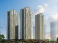 武汉市世纪同辉项目